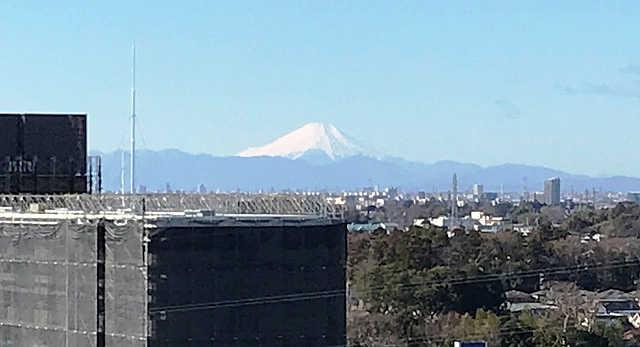 西新井大師 初詣の駐車場/近い・安い穴場の駐車場